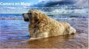 BlogCamaraEnMano